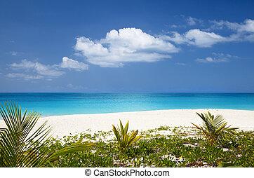 Beautiful Caribbean Beach, Antigua