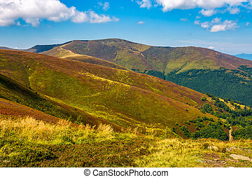 beautiful Carpathian Mountain Range with cloudy sky -...
