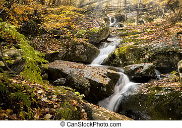 Beautiful Cascade In Autumn
