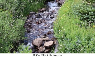 Beautiful Cascading Mountain Stream - A beautiful, cascading...