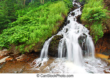 Black Hills National Forest - Beautiful cascading waterfall...