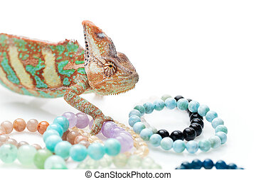 Beautiful chameleon with natural stone bracelets
