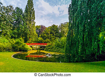 beautiful city park scenery of Valkenberg in breda, water lake with grass and willow tree, Nature scenery of the Netherlands