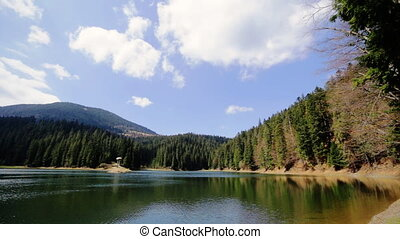Beautiful clean lake surrounded by pine forest in summer on a sunny day