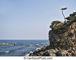 Beautiful cliff by the sea in Naksansa temple, South Korea