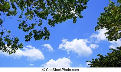 Beautiful Clouds on a Blue Sky with Green Surround. Speed up. Timelapse.