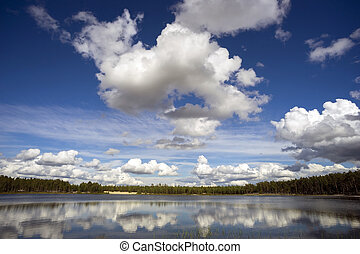 Beautiful clouds over the forest lake.