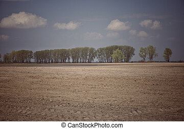 Beautiful cloudy sky above the forest belt. A plowed agricultural field. Landscape.