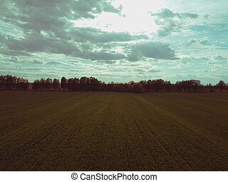 Beautiful cloudy sky over the field, aerial view. Forest belt.