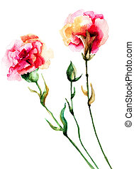 Beautiful Cloves flowers, watercolor illustration