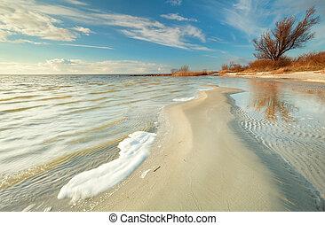 beautiful coast at low tide at Ijsselmeer