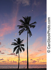 Beautiful Coast Sunrise - Tropical Fort Lauderdale, Florida...