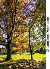 Beautiful colorful autumn.