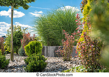 Beautiful Colorful Backyard Garden with Many Different Plants and Trees