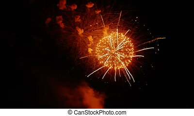 Beautiful colorful firework. Celebration - Colorful...
