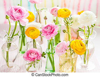 colorful ranunculus - Beautiful colorful ranunculus in glass...