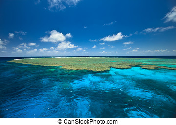 Beautiful colors of the Clam Gardens at the Great Barrier...