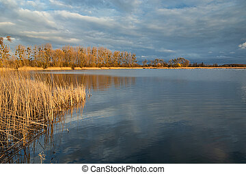Beautiful colors of trees and reeds on a quiet lake