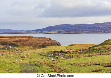 Beautiful country side landscape around Boreraig