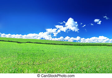 beautiful country view