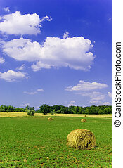 Beautiful Countryside - Agricultural landscape of hay bales...
