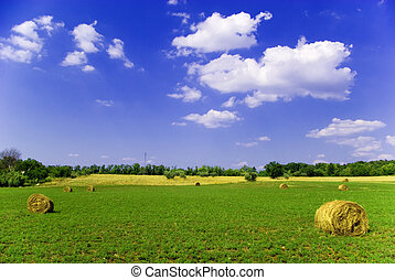 Beautiful Countryside - Agricultural landscape of hay bales ...