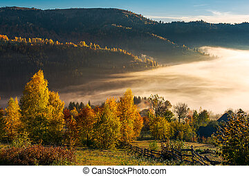 beautiful countryside in autumn at sunrise. trees in...