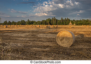 Beautiful Countryside Landscape: Golden  Hay Bales in Harvested Fields and Blue Sky with Clouds