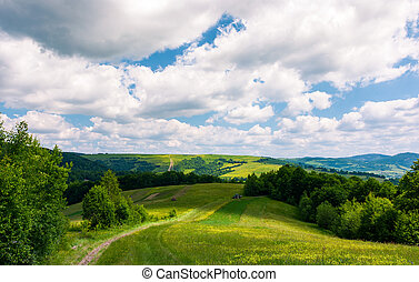 beautiful countryside of Carpathians in summer. country road...