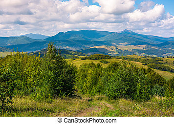beautiful countryside of Crapathians in early autumn....