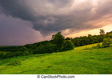 beautiful countryside on a cloudy sunset. trees on grassy...