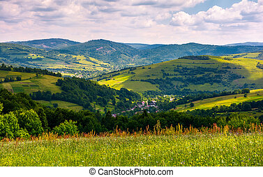 beautiful countryside with grassy fields in summer....