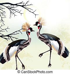 Beautiful couple of birds