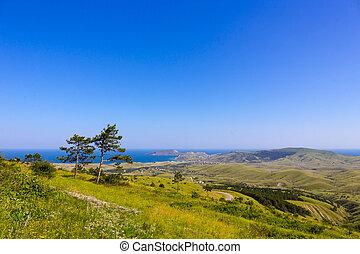 Beautiful crimean green landscape