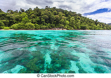 Beautiful crystal clear sea at tropical island, Koh Lipe,...