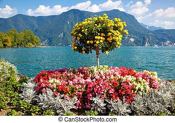 Beautiful decorative tree