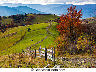 beautiful deep autumn countryside scene. wooden fence near...
