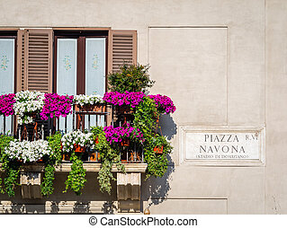 Beautiful display of flowers in Navona Square, Rome