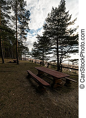 Beautiful distant picnic and camping spot near a Baltic sea in a pine forest with a boulder beach in the background - Veczemju Klintis, Latvia, April, 2019