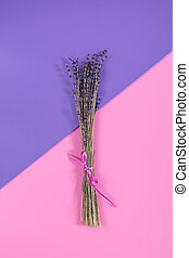 Beautiful dried lavender bouquet on violet pink surface. Top...