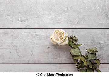 Beautiful dried rose on wooden background