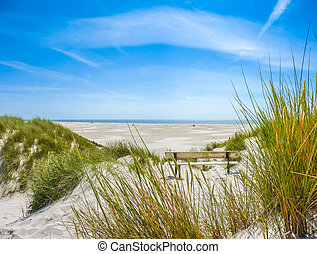 Beautiful dune landscape and long beach at North Sea - ...