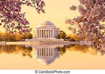 Sun rising illuminates the Jefferson Memorial and Tidal Basin with bright pink cherry blossoms framing the monument