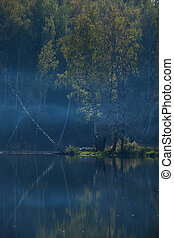 early morning on a lake in a forest