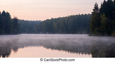 early morning with fog on a lake in a forest
