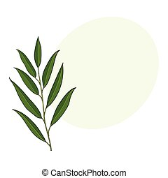 Beautiful, elegant hand drawn willow tree twig, branch, decoration element