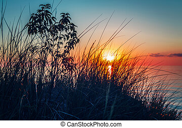 evening sunset landscape at Canadian Ontario lake Huron in Pinery Park