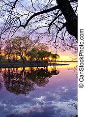 beautiful evening sunset landscape on lake