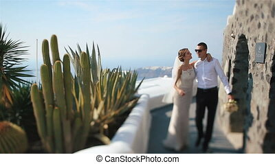 Beautiful fabulous happy bride and stylish groom walking together on an exotic island