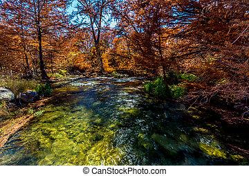 Beautiful Fall Foliage on the River, Texas.